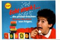 Frigeo_1986